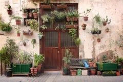El cultivar un huerto urbano Foto de archivo libre de regalías