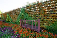El cultivar un huerto vertical en el parque Foto de archivo