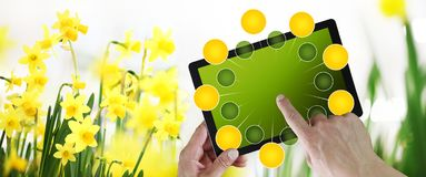El cultivar un huerto y concepto del comercio electr?nico de las flores, compras en l?nea en la tableta digital, mano que se?ala  foto de archivo libre de regalías