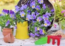 El cultivar un huerto y herramientas Foto de archivo libre de regalías