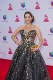 El décimosexto Grammy Awards latino anual Fotografía de archivo