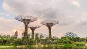 El día al lapso de tiempo de la puesta del sol cultiva un huerto por la bahía Singapur almacen de metraje de vídeo