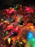El día de fiesta de la Navidad se enciende en nieve fresca en un arbusto Imagenes de archivo