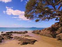 El día de invierno de Nueva Zelanda Imagen de archivo libre de regalías