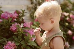 El día de los niños Pequeño bebé Verano Madres o día para mujer Nuevo concepto de la vida Día de fiesta de la primavera Niño pequ fotografía de archivo libre de regalías