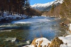 Primavera en montañas Imágenes de archivo libres de regalías
