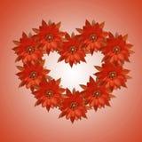 El día de tarjeta del día de San Valentín de los fondos de la flor Imagen de archivo