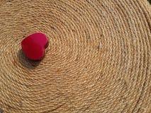 El día de tarjeta del día de San Valentín rojo feliz del corazón en la tierra negra Imagen de archivo libre de regalías