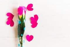 El día del ` s de la tarjeta del día de San Valentín con tiene rosa color de rosa en de madera blanco y el corazón p Imágenes de archivo libres de regalías