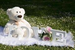 El día y el amor de FValentine, osos de la felpa para los amantes y un prado por completo de margaritas fotografía de archivo