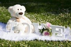El día y el amor de la tarjeta del día de San Valentín, osos de la felpa para los amantes y un prado por completo de margaritas fotos de archivo libres de regalías