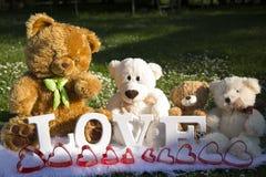 El día y el amor de la tarjeta del día de San Valentín, osos de la felpa para los amantes y un prado por completo de margaritas foto de archivo