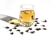 El daño del alcohol Foto de archivo libre de regalías