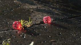 El dado rojo cae en un bloque de cemento en la cámara lenta metrajes