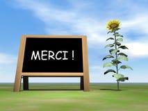 El decir de la pizarra del girasol le agradece en francés - Imagen de archivo libre de regalías