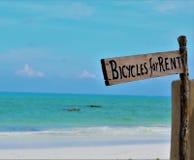 El ` del tablero de madera monta en bicicleta para el ` del alquiler puesto en la playa al lado del agua azul Foto de archivo