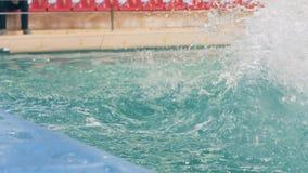 El delfín que salta con la bola durante el entrenamiento en piscina en dolphinarium almacen de metraje de vídeo