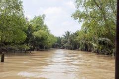 El delta de Mekong Imagen de archivo