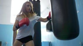 El deporte y la gente, los guantes que llevan del boxeador de sexo femenino perfora el bolso pesado en gimnasio metrajes