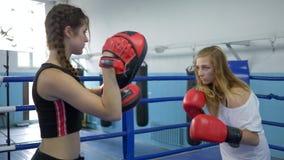 El deporte y la gente, muchacha toma soplos en las patas del boxeo del atleta de sexo femenino en con guantes en el anillo en el  almacen de metraje de vídeo
