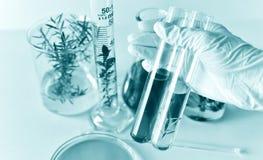 El desarrollo natural de la medicina en el laboratorio, científico investiga y experimento fotografía de archivo