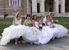 El desfile de la novia Fotografía de archivo libre de regalías