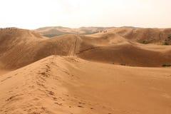 El desierto Fotos de archivo libres de regalías