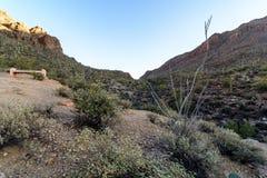 El desierto de Arizona Sonoran pasa por alto del valle imagenes de archivo