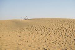 El desierto de Dubai con formaciones de la arena Imagen de archivo