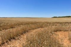 El desierto de los reales de los bardenas Imagen de archivo