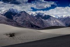 El desierto frío Fotos de archivo