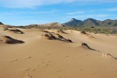 El desierto tiene gusto de la arena de la playa en España Imagenes de archivo