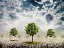 El desierto y los árboles Stock de ilustración