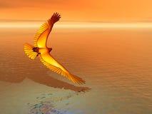 El desnatar del águila de oro Imagenes de archivo