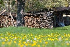 el despertar del este de la primavera del área rural de la cabaña del campo Fotografía de archivo