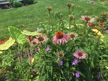 El despertar entre las flores foto de archivo libre de regalías
