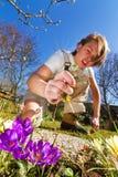 Escardar el jardín de la primavera Fotos de archivo