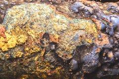 El detalle y la textura del abastecimiento de agua de acero oxidado instalan tubos Imágenes de archivo libres de regalías