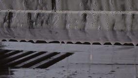 El detergente de la espuma cae el goteo de la carrocería almacen de video