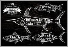 El diagrama cortó los salmones de las reses muertas, peces espadas, arenques, atún Imagen de archivo
