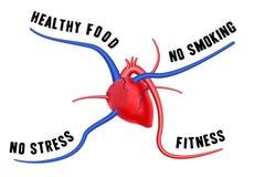 Un corazón sano stock de ilustración