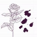 El dibujo de la tinta subió Imagen de archivo