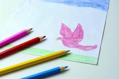 El dibujo de un niño de una paloma, de una hierba y de un cielo del rosa con los lápices coloreados Imágenes de archivo libres de regalías