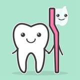 El diente y el cepillo de dientes son mejores amigos Imagen de archivo