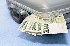 El dinero checo rasguñó en una maleta gris del metal Imágenes de archivo libres de regalías