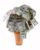 El dinero crece en una planta en un crisol Foto de archivo