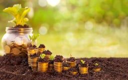 El dinero crece y los ahorros Foto de archivo