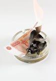 El dinero en un cenicero quema Imágenes de archivo libres de regalías