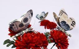 El dinero vuela Fotos de archivo libres de regalías