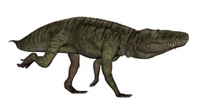 El dinosaurio de Batrachotomus que corre -3D rinde Fotos de archivo